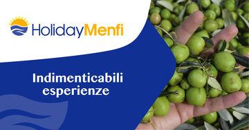 Frantoi in Festa, olio sapore d'autunno:  a Menfi per l'oro verde di Sicilia